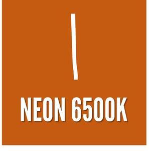 FITA LED NEON 220V. IP65 6500K. 1mt.