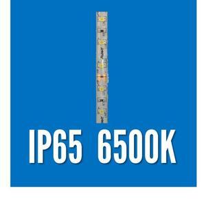 FITA LED 12V. IP65 6500K. 5mt.